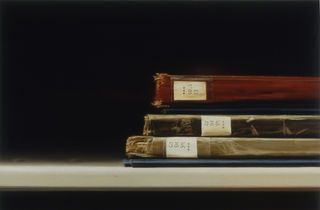 Xie - the MOMA Library 46-50 - oil on canvas